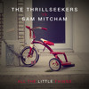 The Thrillseekers vs Sam Mitcham - All The Little Things (Original Mix)