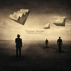 Thirteen Senses   Times Like These (Cover)