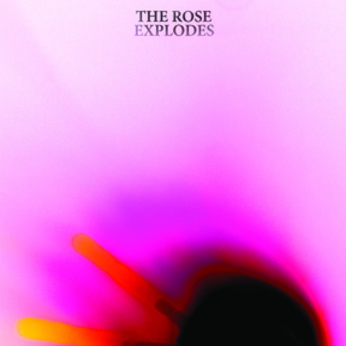 "Dream Boat - ""The Rose Explodes"""