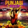 TOMMY LEE SPARTA - WHINE UP (RAW) - PUNJABI RIDDIM - UIM RECORDS - 2014