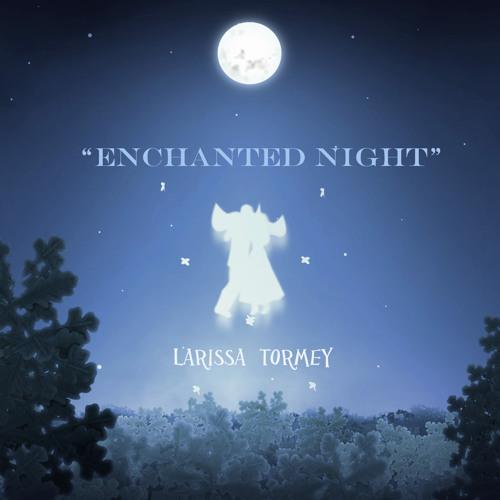 Enchanted Night (www.larissatormey.com)