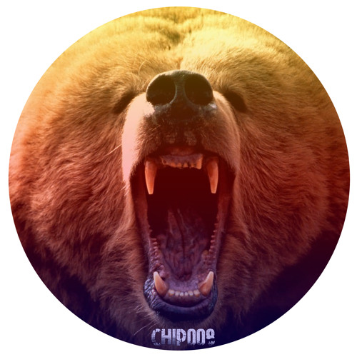 Various - Grizzly Basslines Ep (CHIP008)