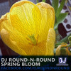 Download Round-N-Round - Spring Bloom (DJ MIX) [Free Download] Mp3