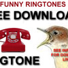 Nightingale Ringtone  FREE to download and use on your Phone