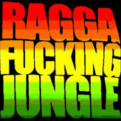 Reggae Drum and Bass mix jungle