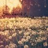 Stockwerk 2 & Shineline - Immer Wieder Sonntags ( Original Mix ) //FREEDOWNLOAD//