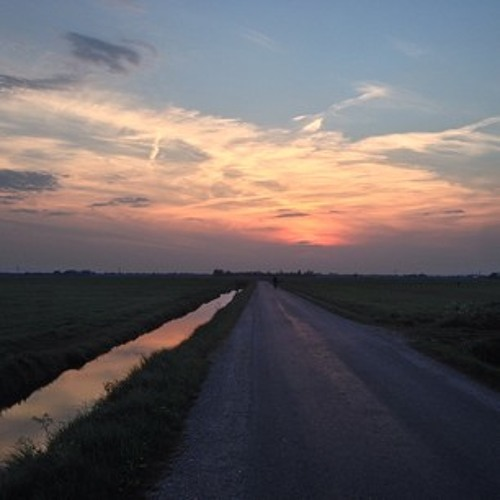 Broedende vogels in de polder
