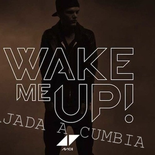 Wake Me Up (PREVIEW BAJADA A CUMBIA OEEE JAJA)