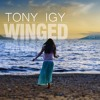 Tony Igy - Winged (Original Mix) mp3