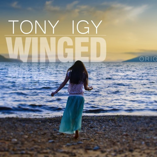 Tony Igy - Winged (Original Mix)