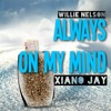 Always On My Mind | Willie Nelson - Xiano Jay (Cover)