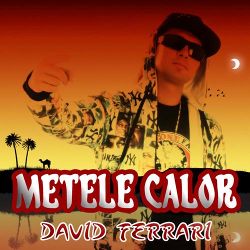 David Ferrari - Metele Calor (Reggaeton 2014)
