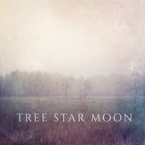 Tree Star Moon - Falling