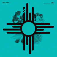 Bad Suns - Salt (Peter Thomas Remix)