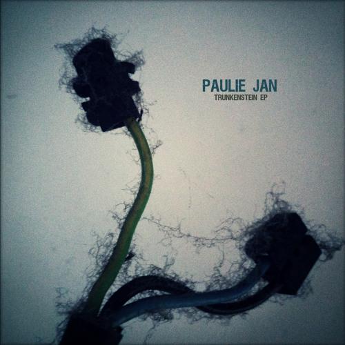 "Paulie Jan, ""Trunkenstein EP"" (FDSB004, 2014)"