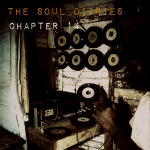 The Soul Diaries : Ch 14