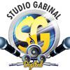 MONT== ROU ROU ROU HÁ HÁ O BIEL VAI SARNEAR [[ DJ BIEL DO ANIL ]] ((STUDIO GABINAL DIGITAL HD))