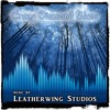 Download Crazy Diamond Blues - Royalty Free Music from LeatherwingStudios.com Mp3
