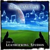 Download Moonlight Duet - Royalty Free Music from LeatherwingStudios.com Mp3