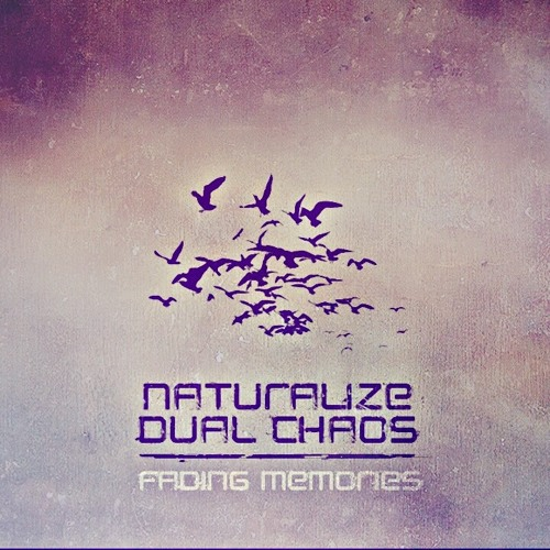 Naturalize & Dual Chaos - Fading Memories Preview OUT NOW!