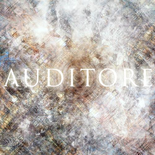 Auditore