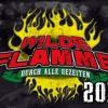 Verdammte Welt (Frei.Wild) für Wilde Flamme 2014
