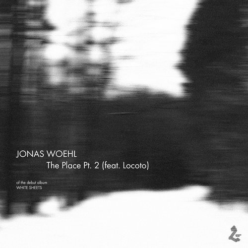 Jonas Woehl - The Place Pt. 2 ( Parra for Cuva remix )