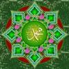 Ey Sevgili,Aşk-ı Muhammed (sav)