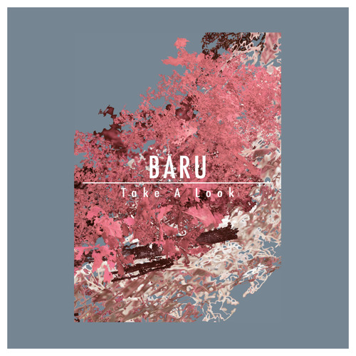 Baru - Take a Look (Conny Wolf Remix)