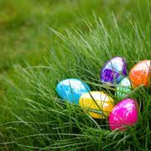 Believe It Or Not- The Selfie Ban, Traumatizing Easter Egg Hunt, Expensive Grill