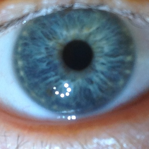 What My Eye Can See