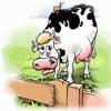 Milk Cow Blues - Remix - Robert Burrows
