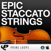 Epic Staccato Strings [Sample Pack DEMO]