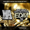 W. A. Production - What About Orchestral EDM Preview