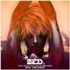Stay The Night - Zedd (LH Remix)