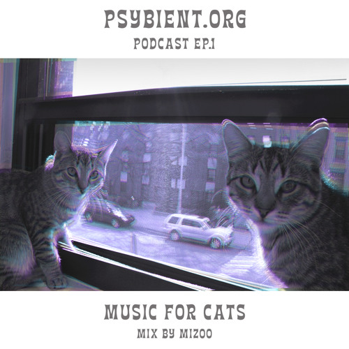 Psybient.org podcast [ep 01] Mizoo - Music for cats (Ambient, Psychill, Pyschedelic)