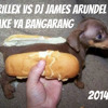 SHAKE YA BANGARANG  ..... SKRILLEX VS DJ JAMES ARUNDEL   REMIX free download