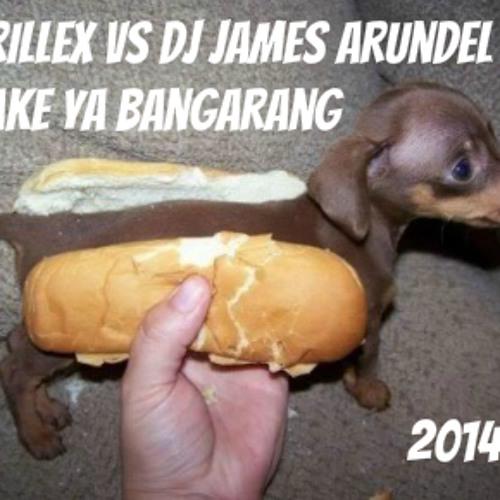 SHAKE YA BANGARANG  ..... SKRILLEX VS DJ JAMES ARUNDEL   REMIX free download