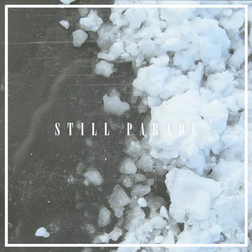 Still Parade - Fields (Rob Shields Remix)