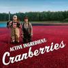 Butternuttz- Cranberries. Linger (butternuttz Blues Mix)
