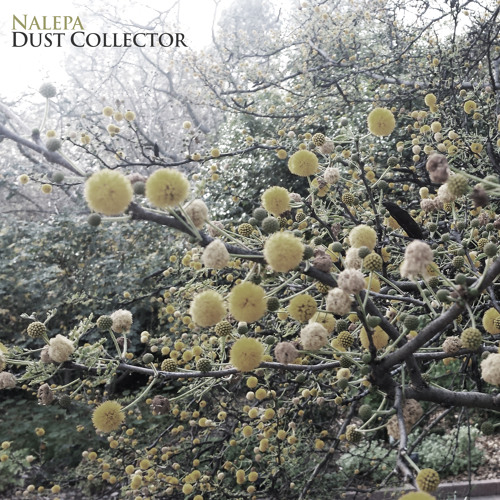 Dust Collector EP