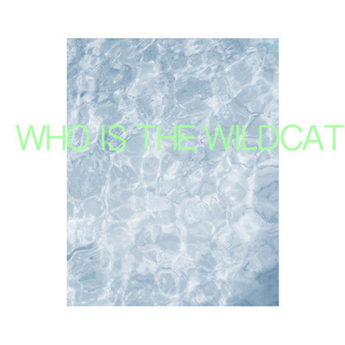 Tigerhead - Who is the Wildcat (Felix! Remix)