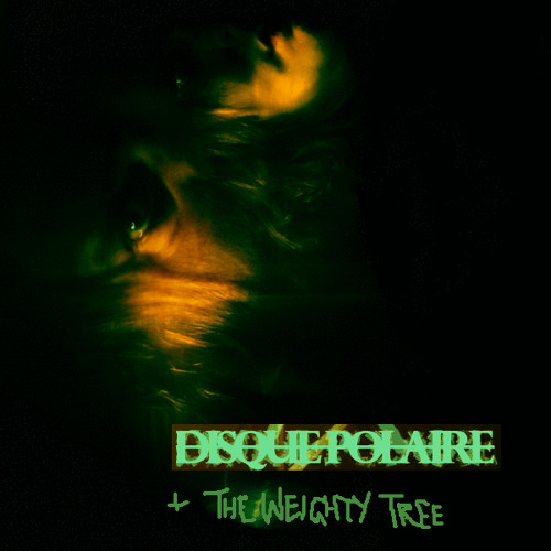 TransitionToALowerEnergyState - DisquePolaire & TheWeightyTree