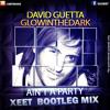 David Guetta- Ain't A Party (Xeetane Bootleg Mix)Promo