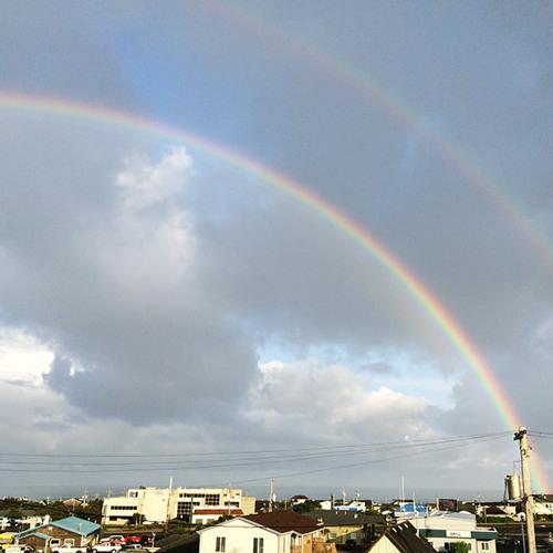 Rainbows, Noah and New Life