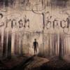 CrashBack-Brzegi Fal