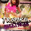 Tropikal Sweetness Vol.2 - Le Mix Zouk Love 2014