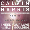 Calvin Harris Ft Ellie Goulding - I Need Your Love ( Merengue Electronico ) Prod.  Andy Mambo