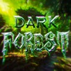 Flooz - Dark Forest mp3