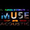 Muse - Time Is Running Out (Acoustic)
